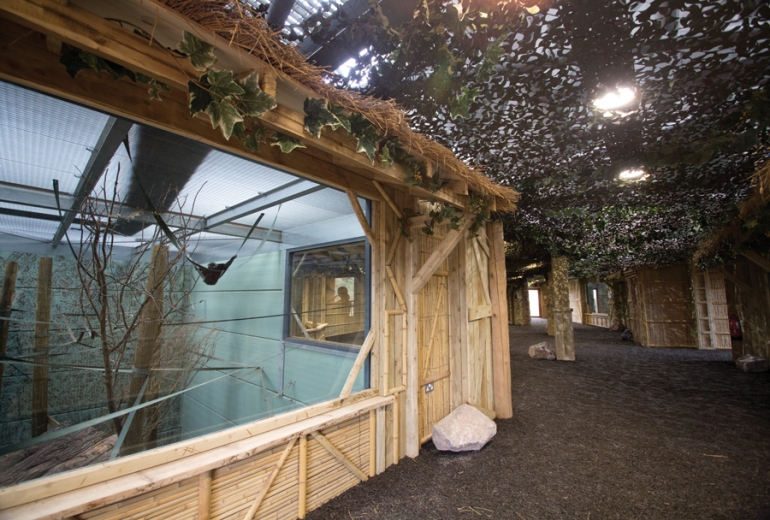 Weedon Architects echoes natural habitat at Twycross Zoo